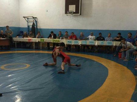 Состоялся открытый турнир по вольной борьбе среди юношей