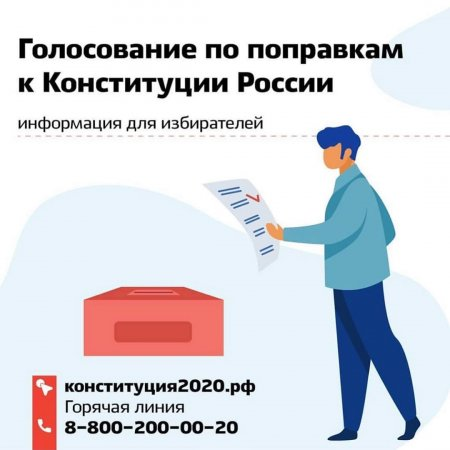 Общая информация по поводу голосования по поравкам  в Конституцию